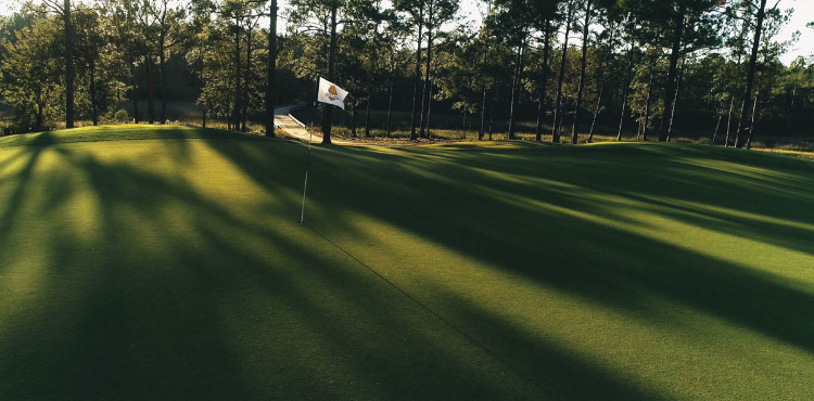 Sunlight comes through trees on the course at Shell Landing Golf Club